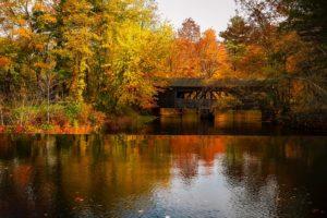 Massachusetts lake in the fall