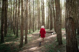 There is a woman in a red coat, going down a hiking path among trees.
