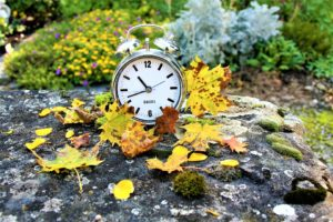 A clock placed on a rock with autumn leaves all around it to illustrate when you can save on your Seattle move.