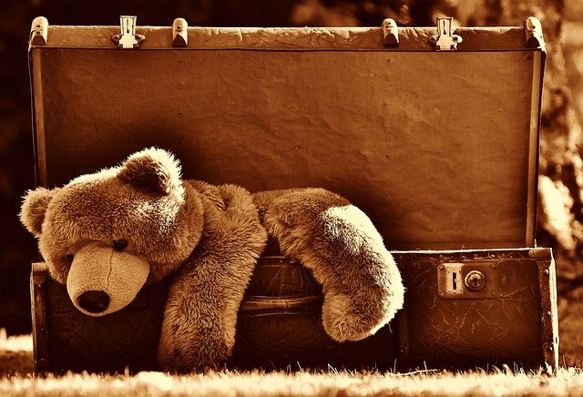 Plush bear on the edge of an open suitcase.