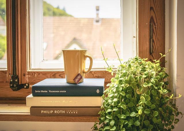 Books on the window