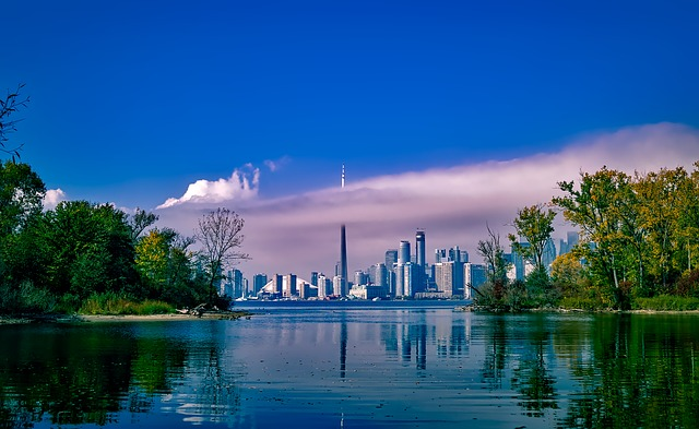 neighborhoods in Toronto for young families